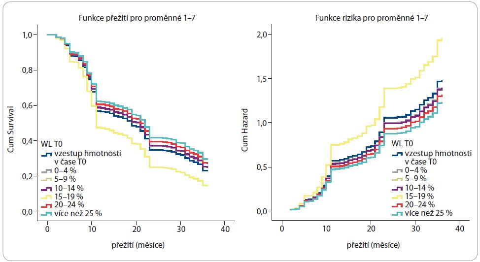 Analýza rizika úmrtí dle WL.