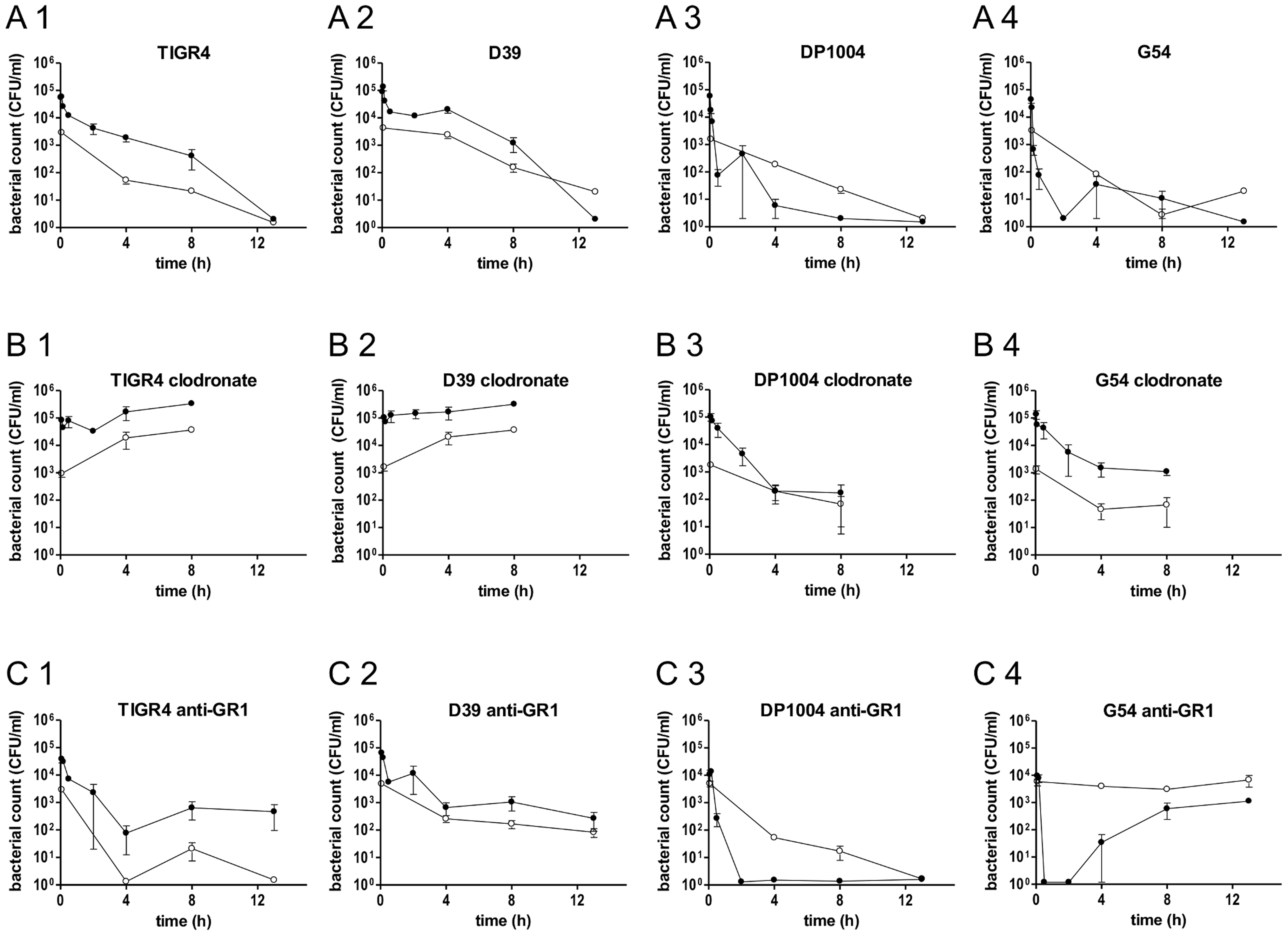 Bacterial counts in blood and spleen of BALB/c mice depleted of neutrophils or macrophages.