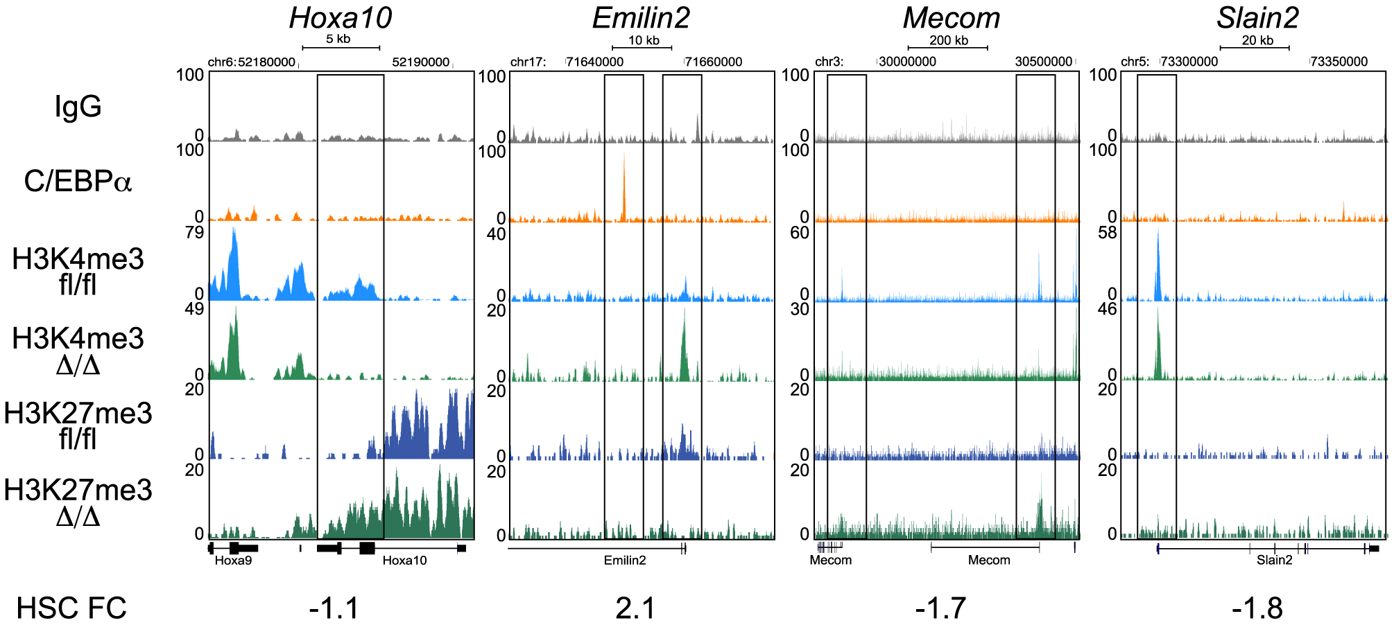 ChIP-seq analysis of H3K4me3 and H3K27me3 in <i>Cebpa</i><sup>Δ/Δ</sup> and <i>Cebpa</i><sup>fl/fl</sup> HSPCs.