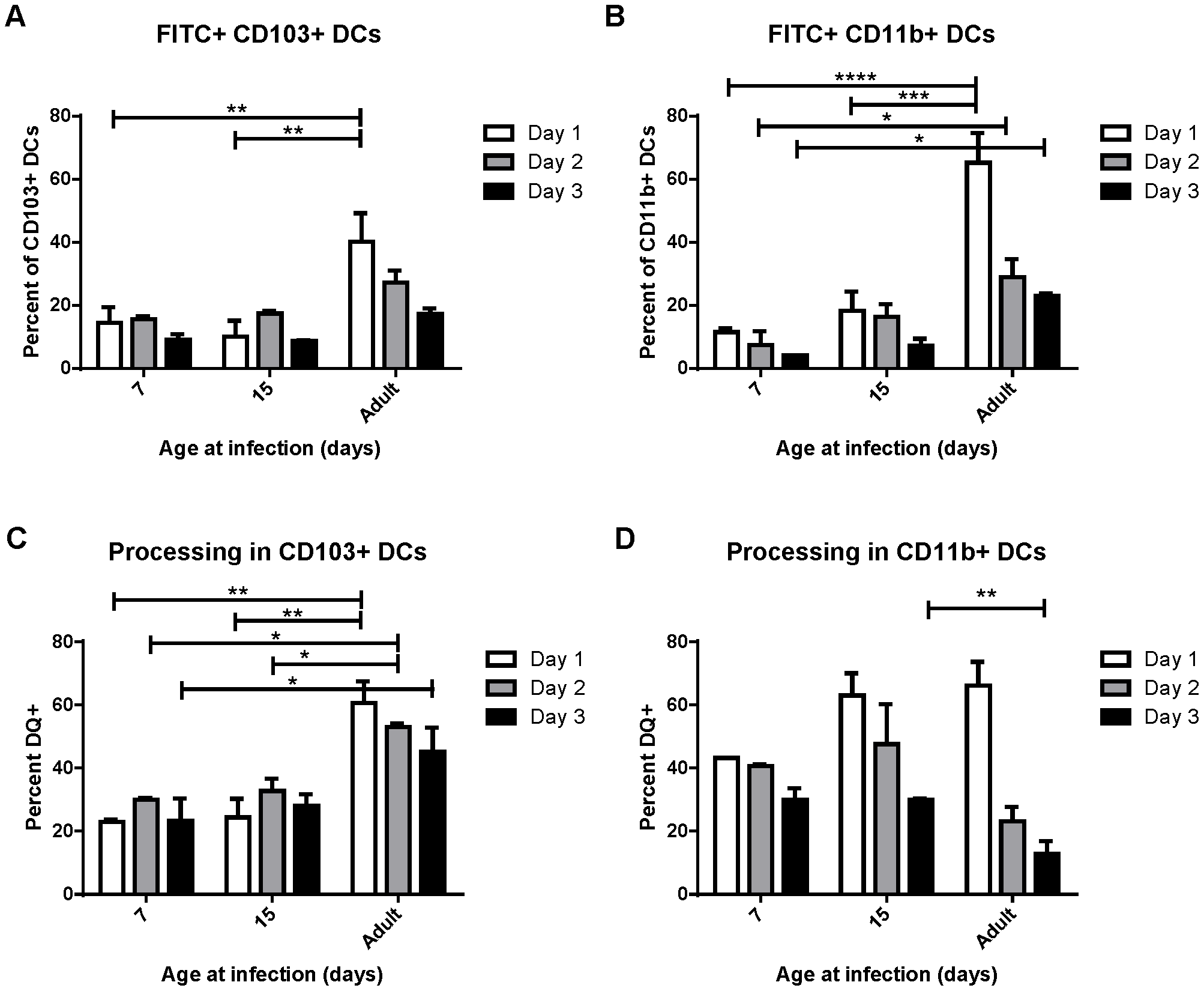 Uptake and processing of soluble antigen is age-dependent.