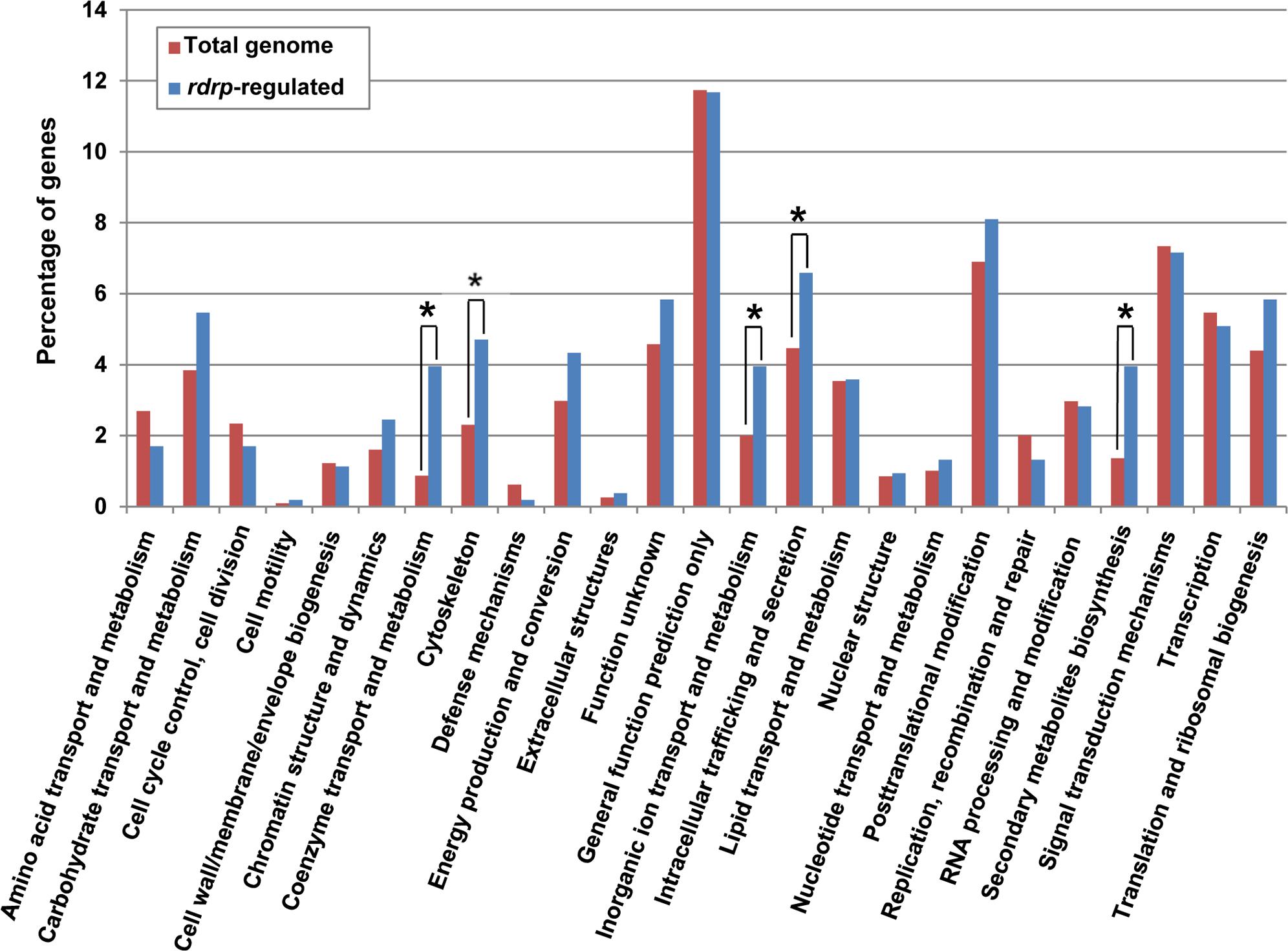KOG classification of genes regulated by the <i>rdrp</i>-dependent <i>dicer</i>-independent rdRNAs.