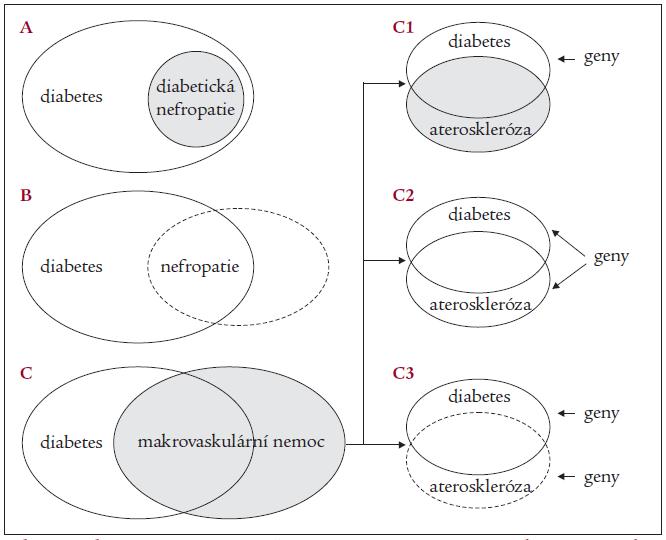 Schematické znázornění existence genetické predispozice k diabetu a jeho pozdním komplikacím v populaci.