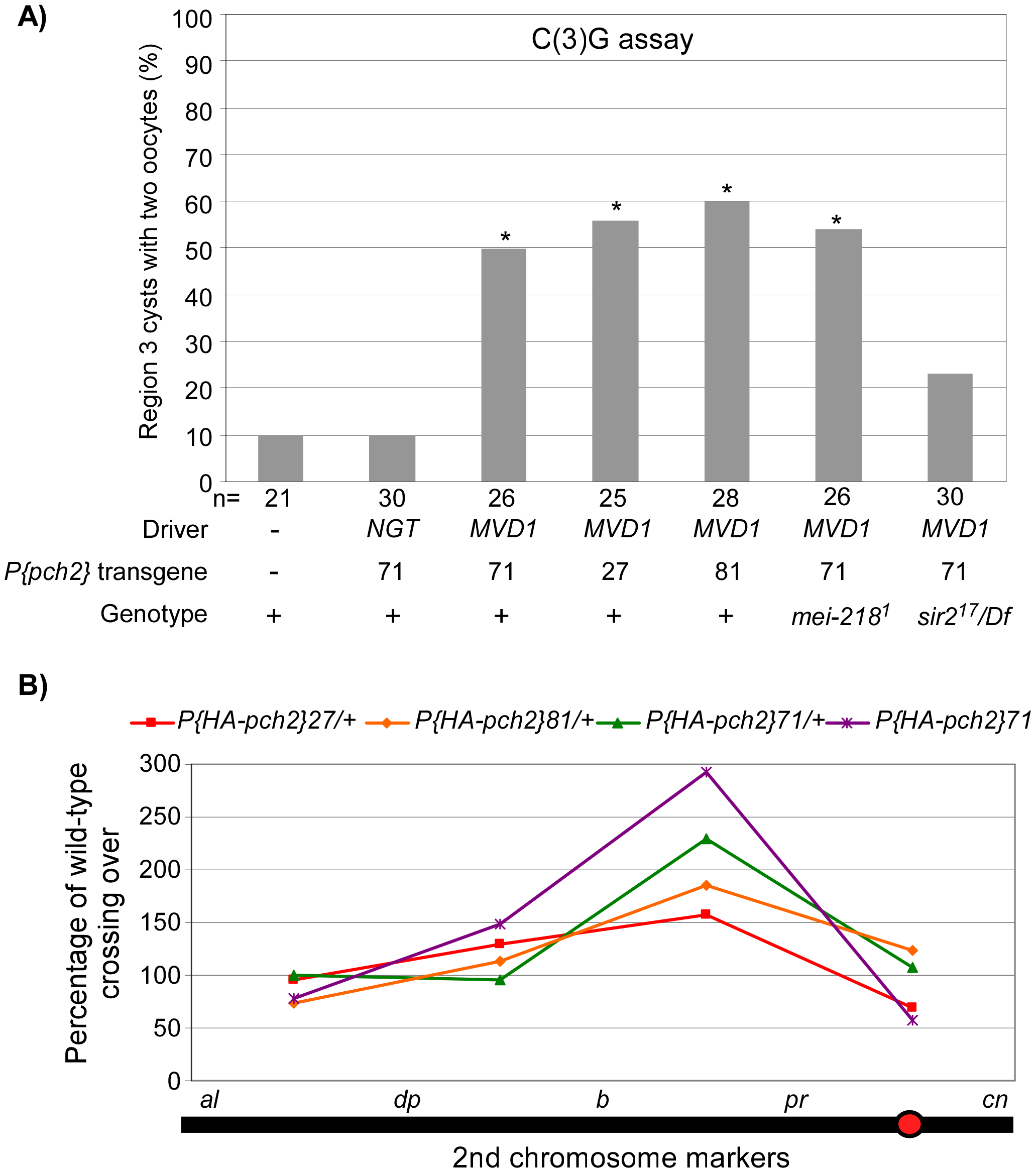 PCH2 overexpression leads to pachytene delays and altered crossover distribution.
