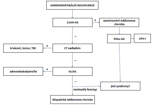 Algoritmus diferenciální diagnostiky Addisonovy choroby (periferní AI)