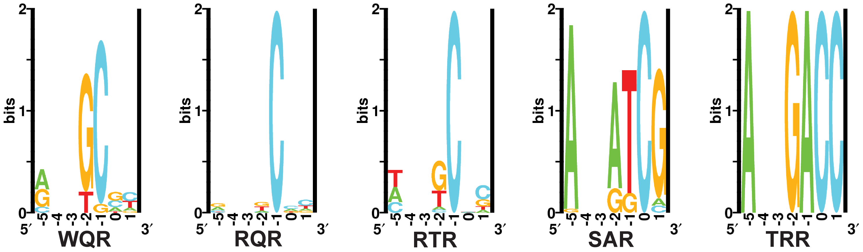 <i>In vivo</i> binding site selection logos.