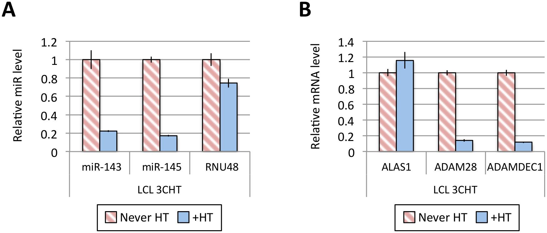 Activation of EBNA3C represses miR-143/miR-145 expression.