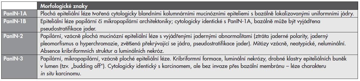 Morfologické znaky pankreatických intraepiteliálních neoplazií (PanIN).