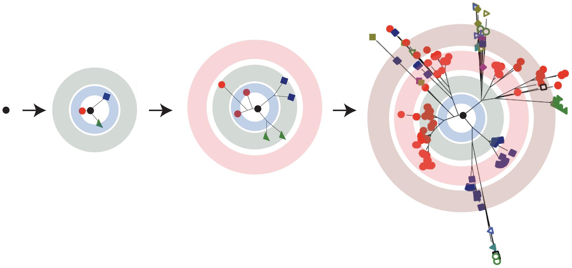 RNA viruses exist as a quasispecies.