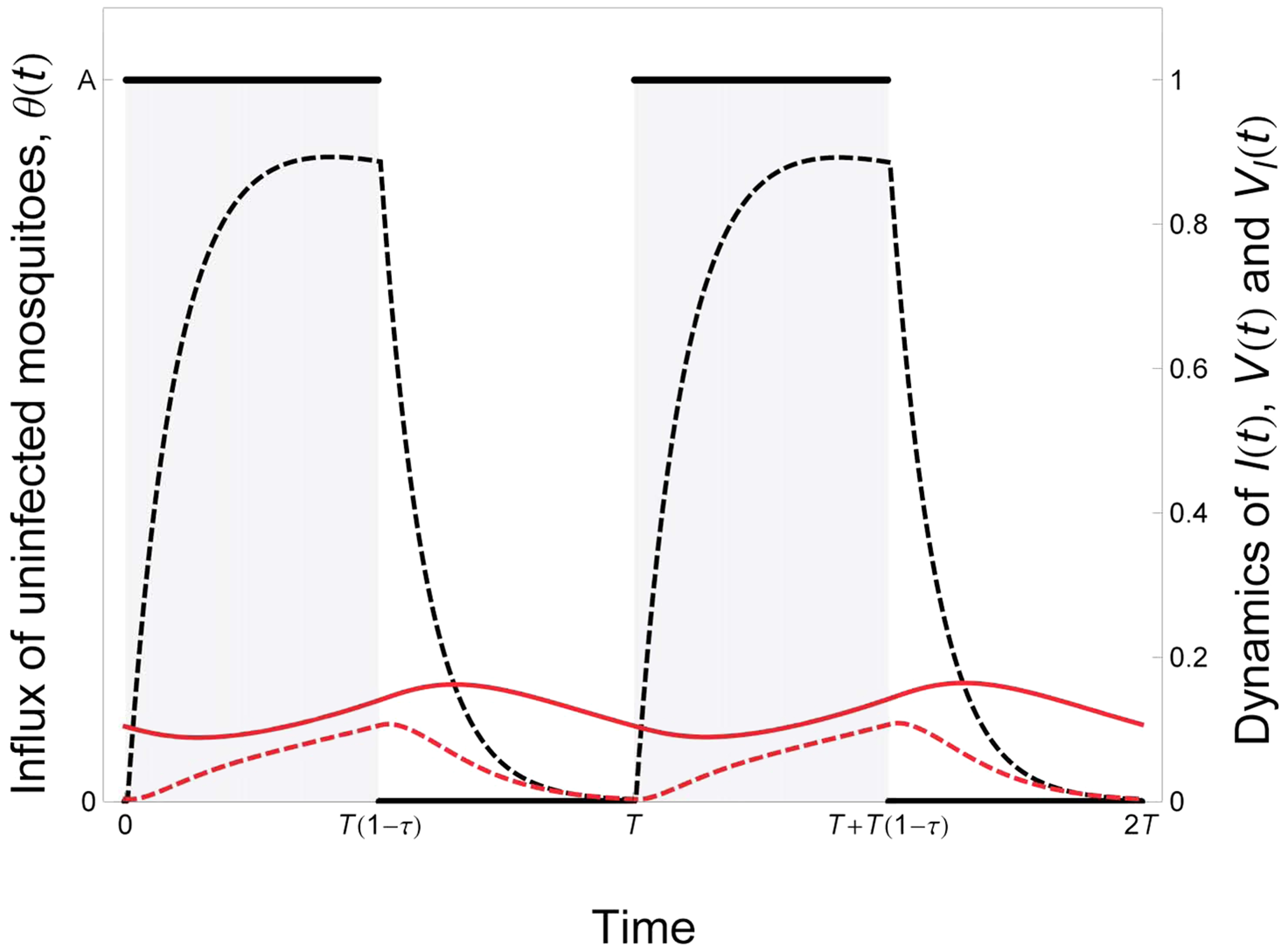 Epidemiological dynamics of a vector-borne disease in a seasonal environment.