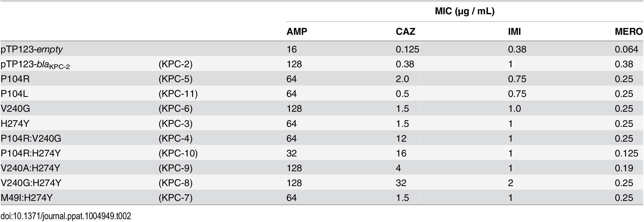 Minimum inhibitory concentrations (MIC's) of antibiotics for KPC variants.