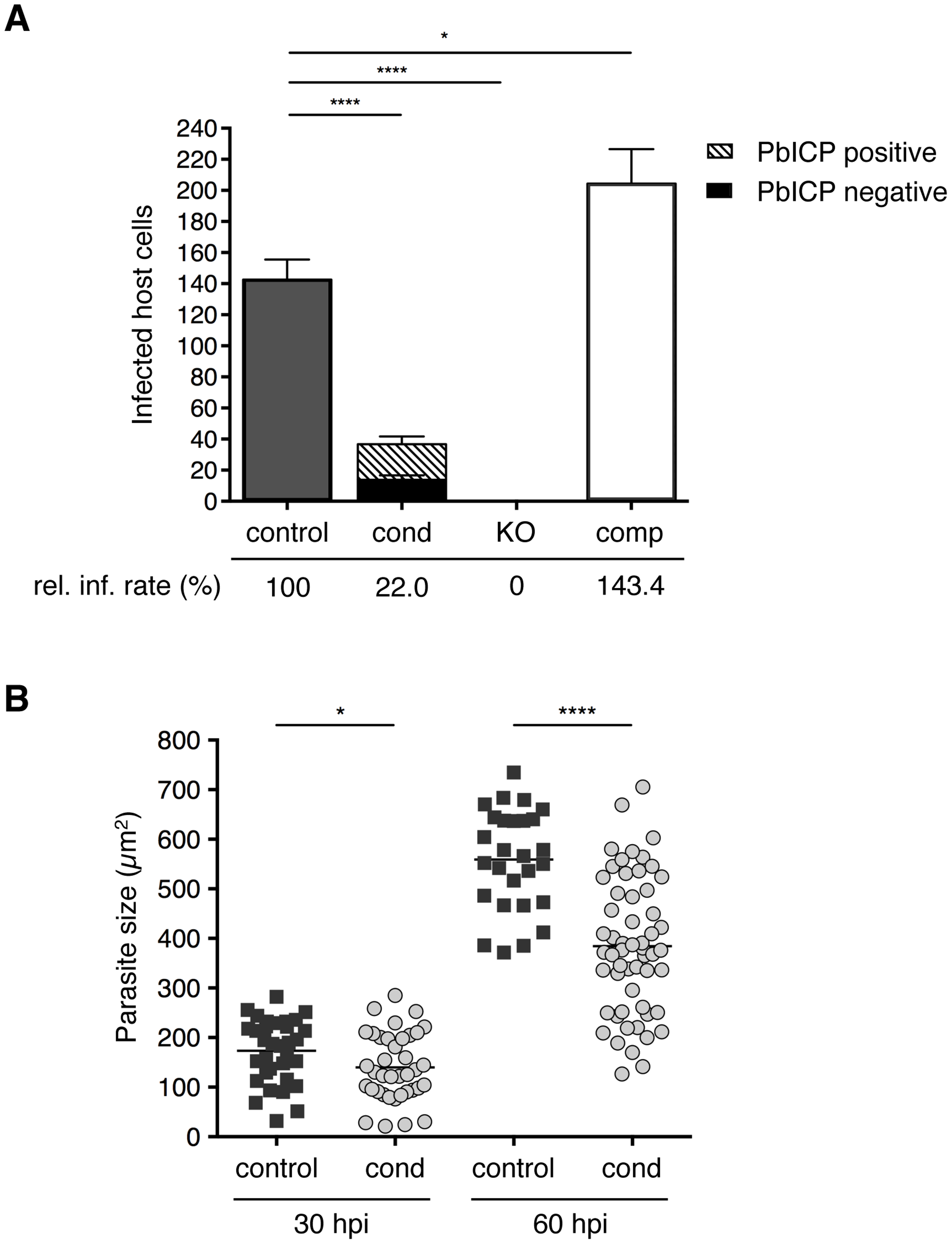 PbICP is important for effective invasion of and development within hepatocytes.