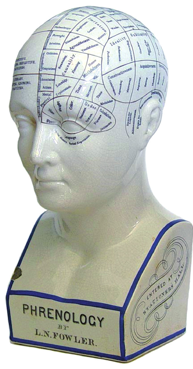 """Frenologická busta vyobrazující mozková """"centra"""""""