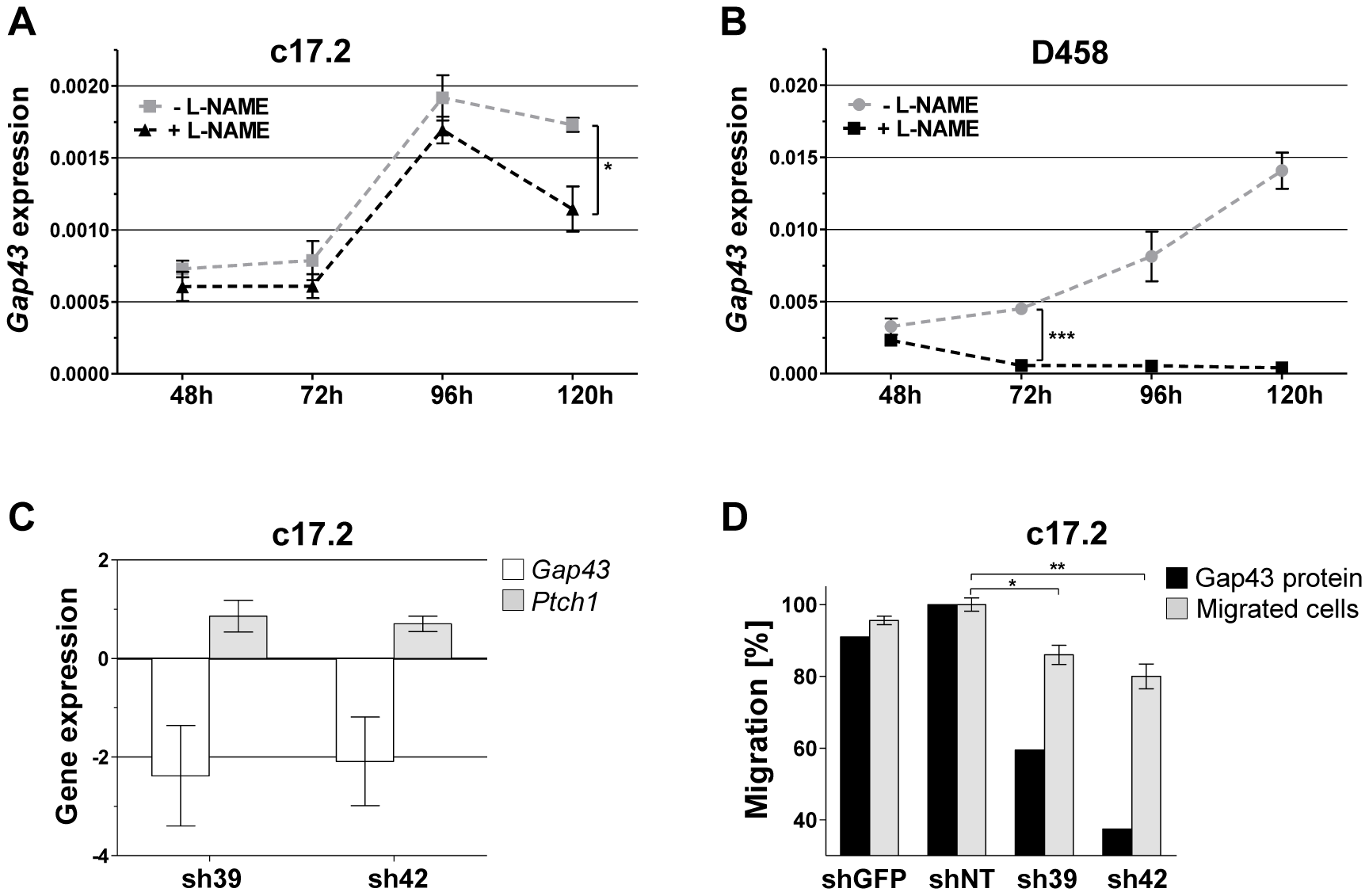 Characteristics and functional implication of Gap43 expression in cell culture.