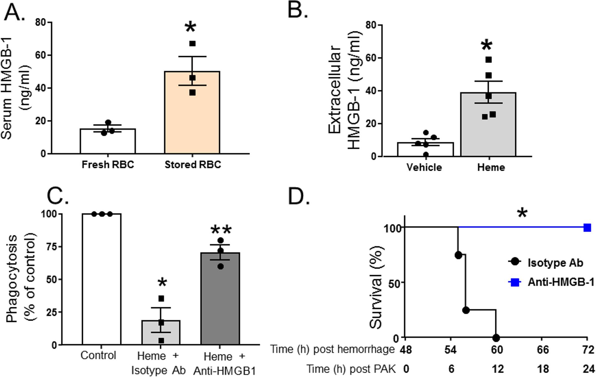Heme induces exogenous release of HMGB1, which subsequently inhibits phagocytosis of <i>P</i>. <i>aeruginosa</i> by alveolar macrophages.