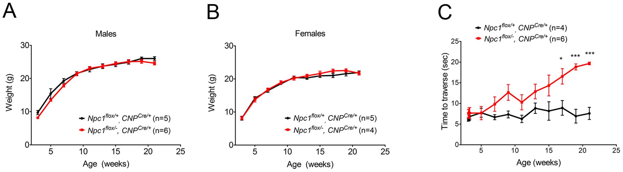 Phenotype of mice following oligodendrocyte-specific deletion of <i>Npc1</i>.