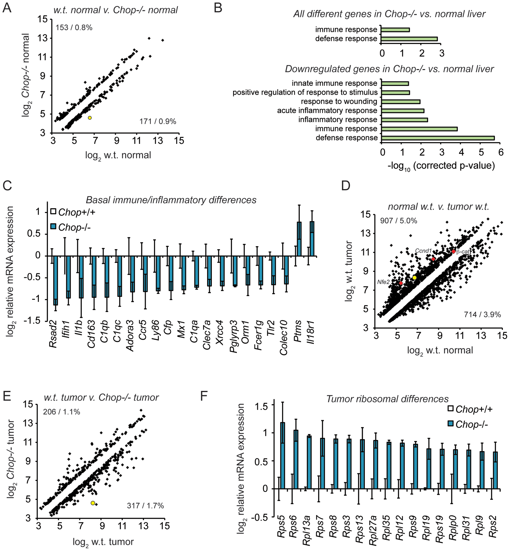 Microarray profiling reveals CHOP-dependent differences in inflammation and ribosomal biogenesis genes.
