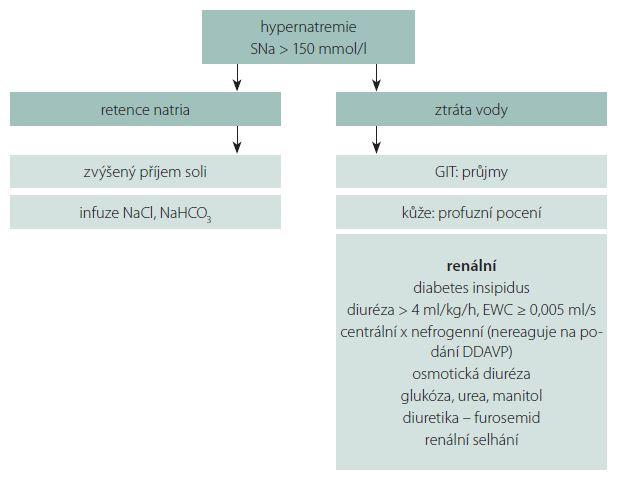 Schéma 2. Diagnostika hypernatremie.