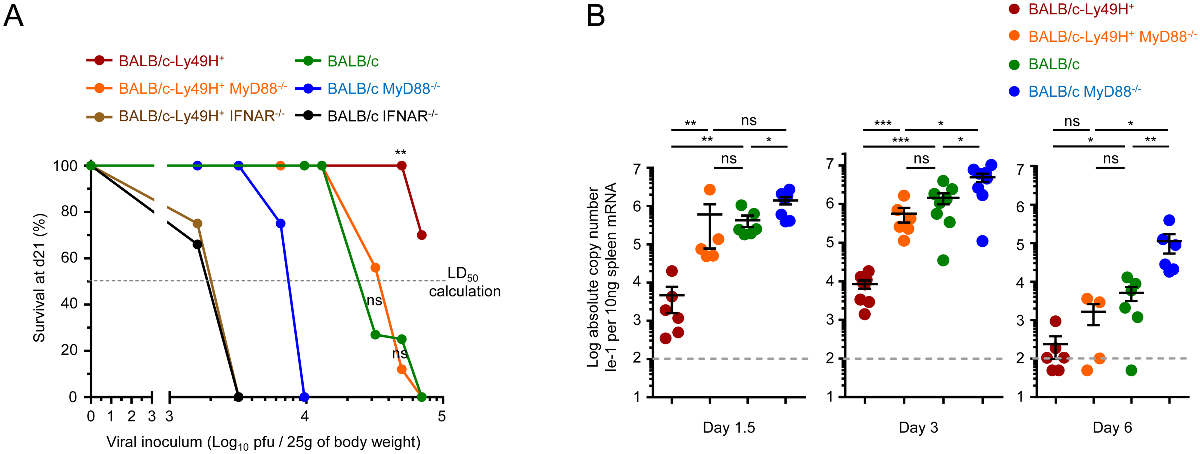IFN-I responses are essential but MyD88 and Ly49H partly redundant to protect against MCMV infection.