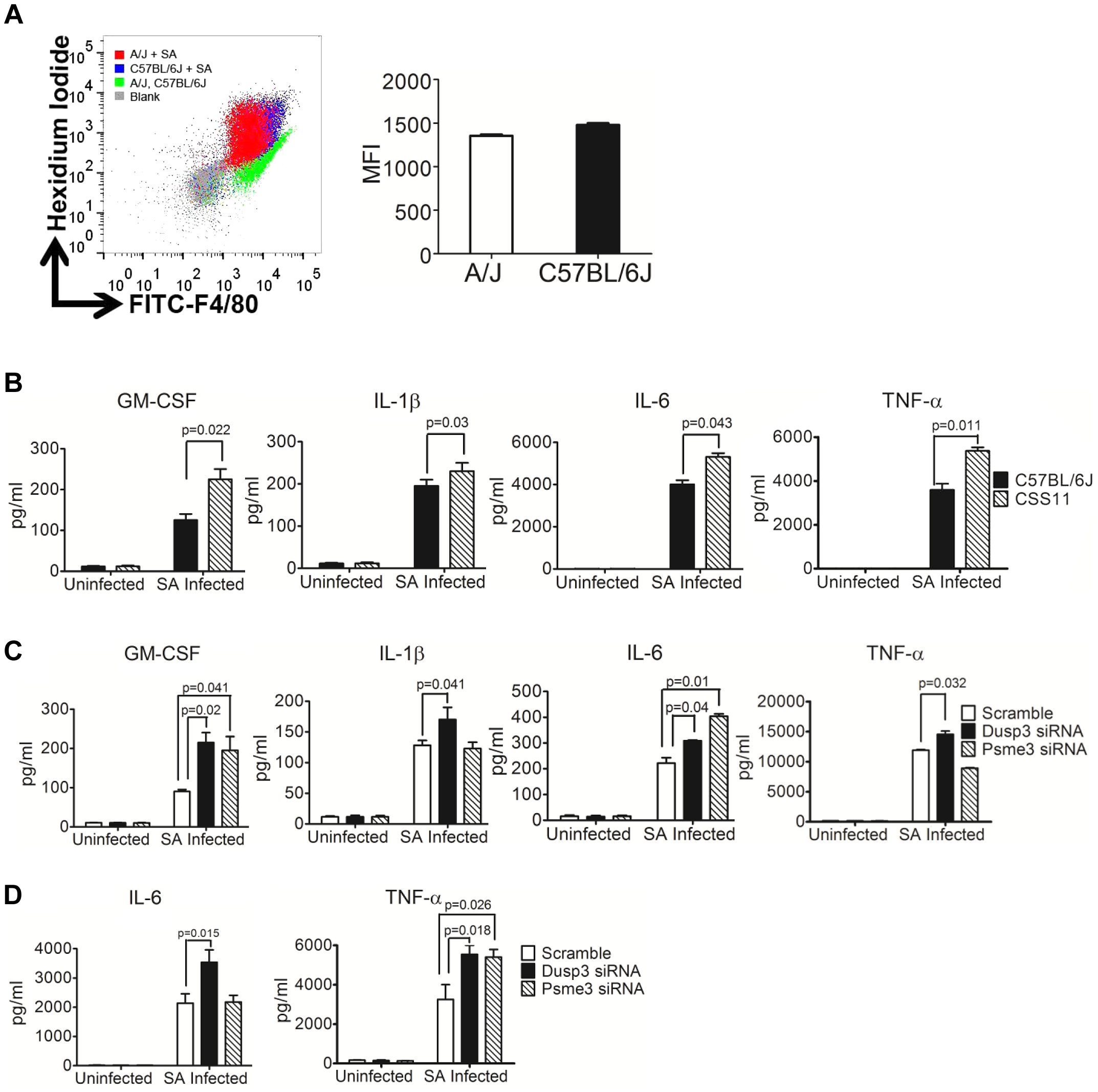 siRNA knockdown of <i>Dusp3</i> and <i>Psme3</i> result in significant elevation of cytokine production, consistent with the pattern of bone marrow derived macrophages from CSS11 as compared with C57BL/6J (GM-CSF, IL-1β, IL-6 and TNF-α).