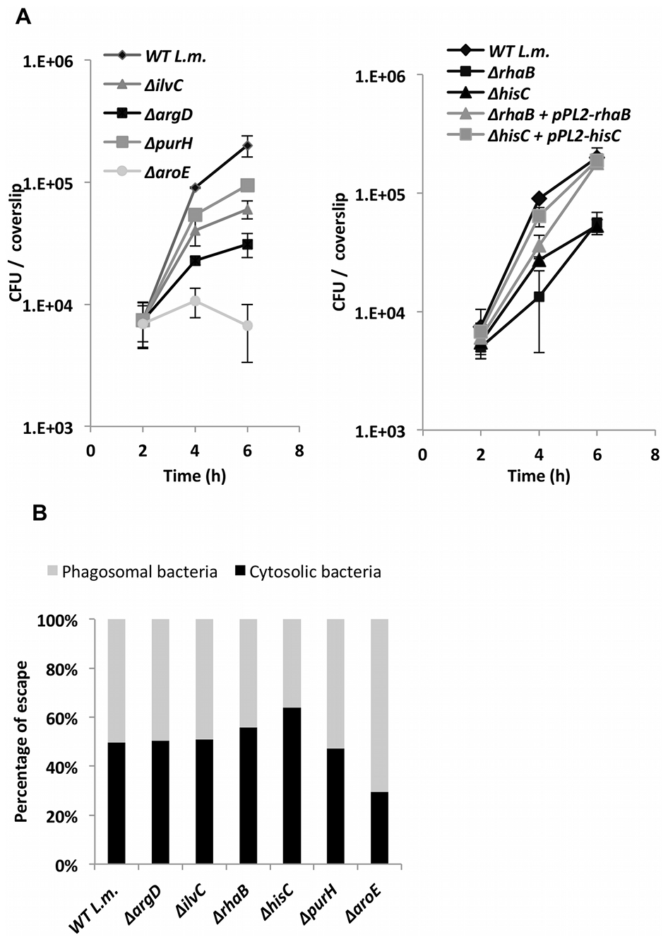 <i>L. monocytogenes</i> metabolic mutants grow less efficiently in macrophage cells.