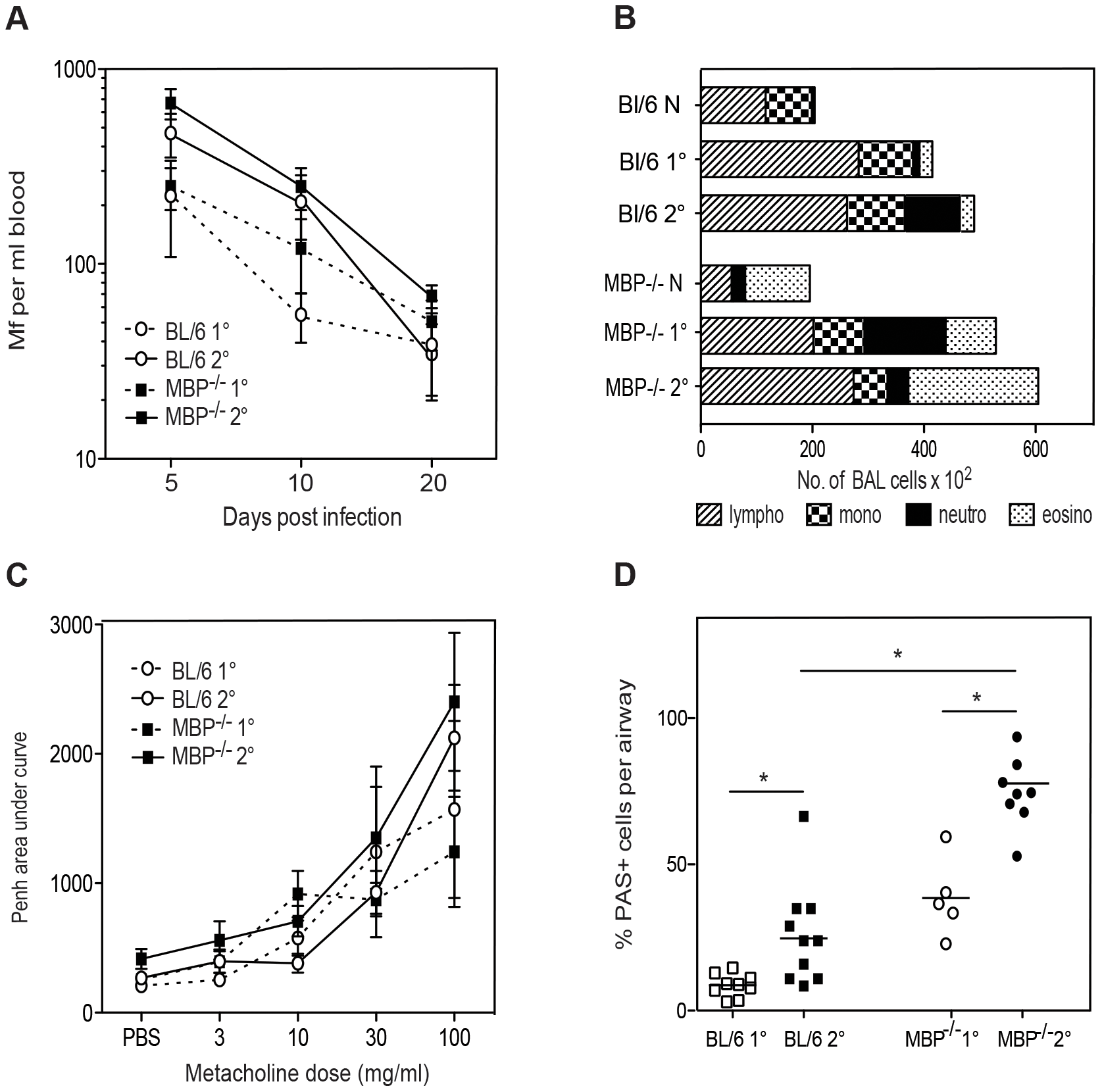MBP-1 is not required for Mf survival but contributes to pulmonary eosinophil recruitment and goblet cell mucus production following Mf infection.