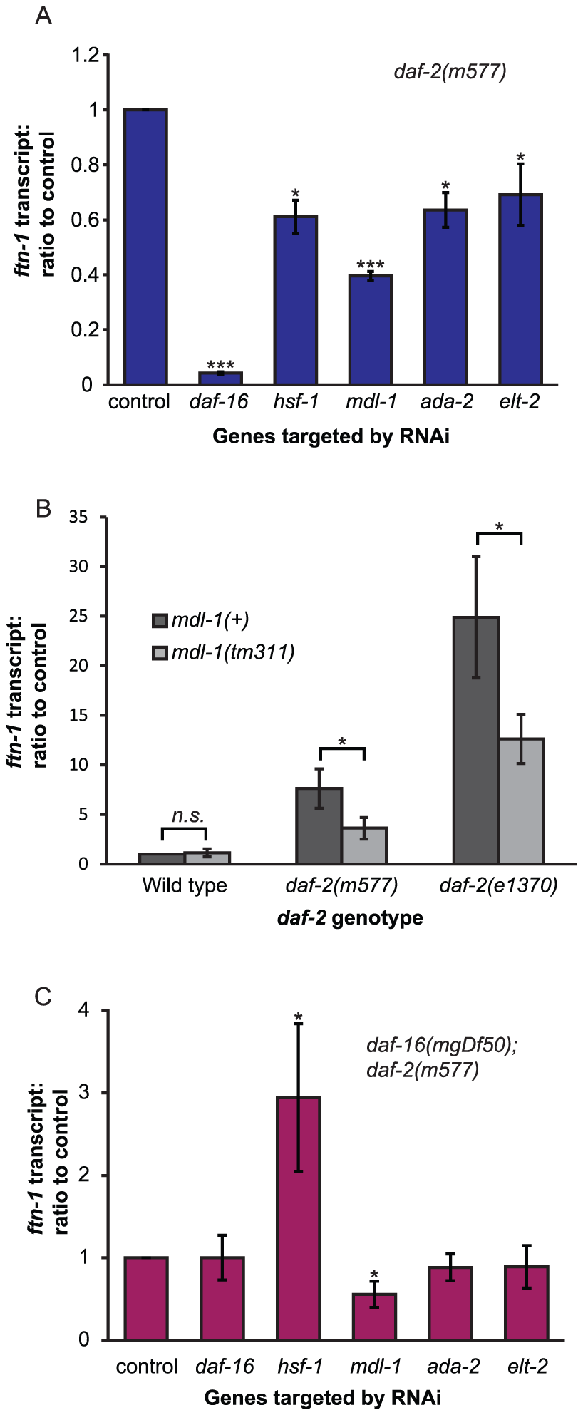 Identification of genes activating <i>ftn-1</i> expression.