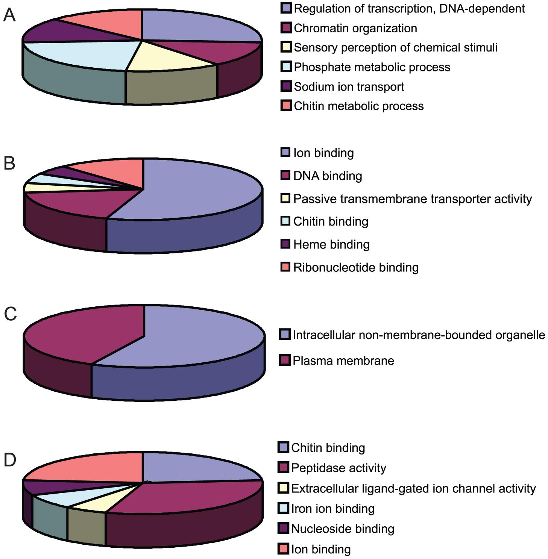 Functional clustering of DEGs.