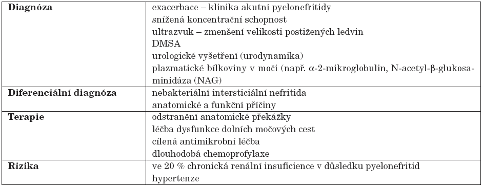 Chronická pyelonefritida. (Upraveno podle [(11, 15]).