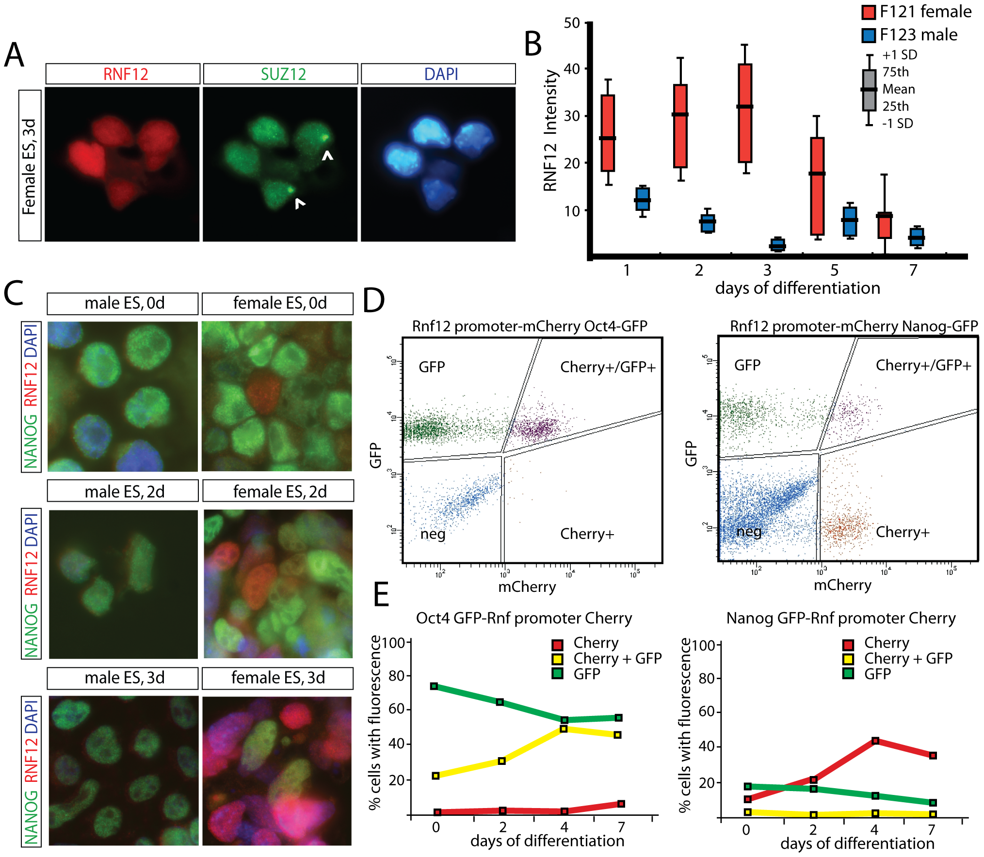 Counteracting roles for RNF12 and NANOG in XCI.
