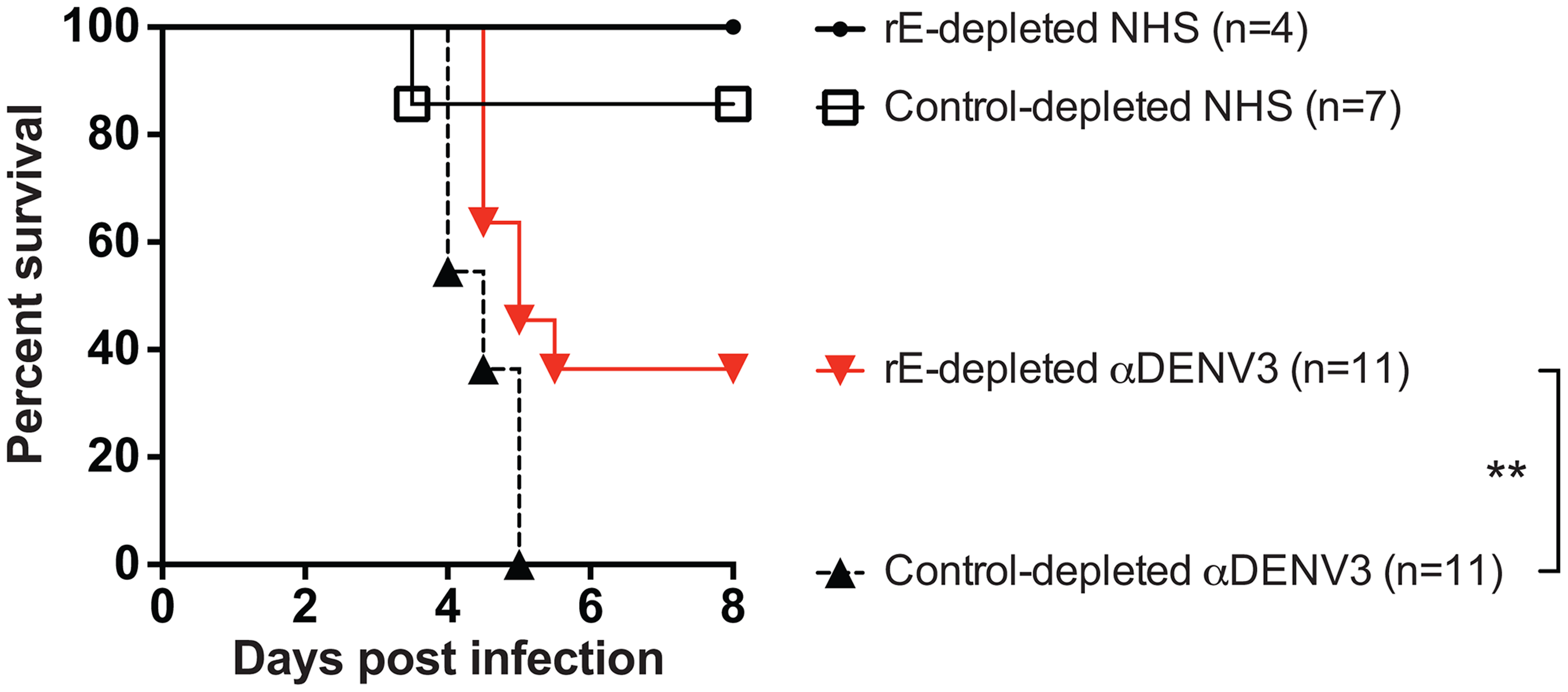 DENV E-specific antibodies in human serum are <i>partially</i> responsible for ADE of heterotypic DENV infections in AG129 mice.