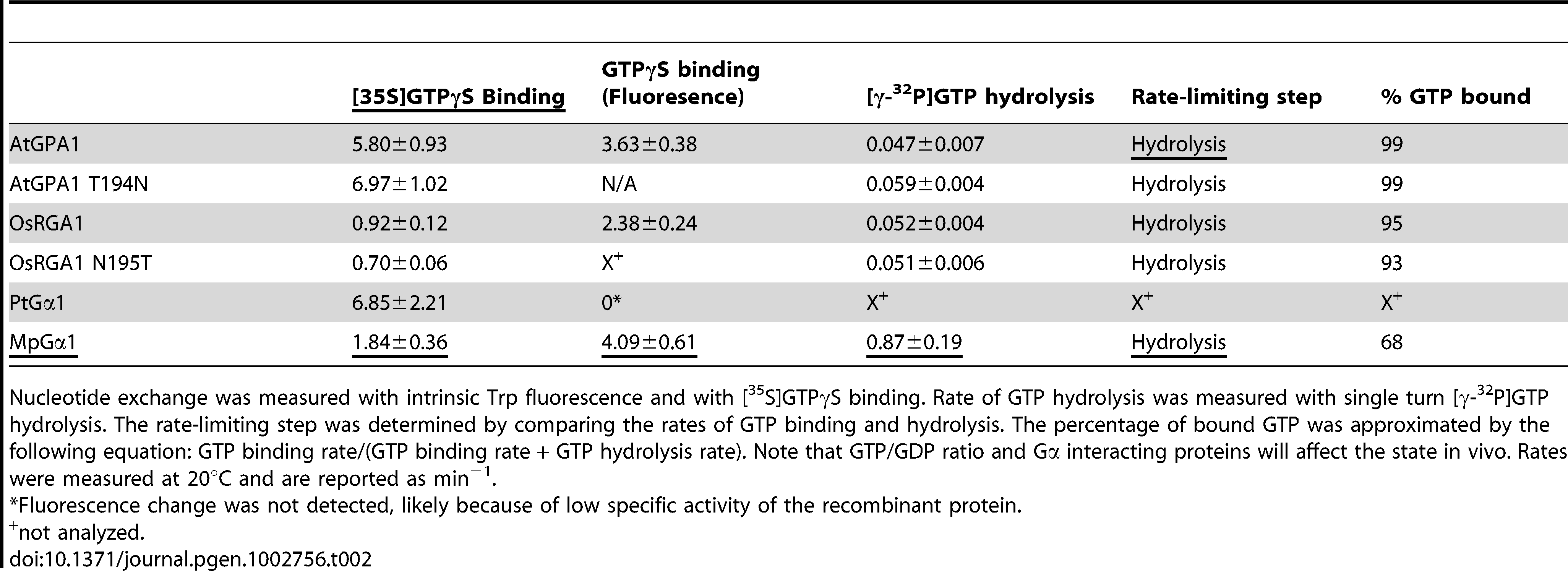 Rates of nucleotide exchange and GTP hydrolysis.