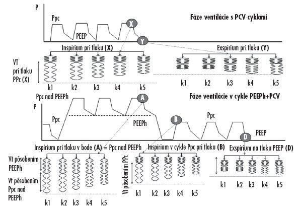 Schéma dynamického modelu vysvetľujúceho plnenie a vyprázdňovanie jednotlivých kompartmentov pľúc v rozhodujúcich fázach dýchacích cyklov pri trojhladinovej ventilácii