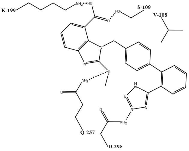 Schéma väzby kandesartanu s aktívnym miestom AT<sub>1</sub> receptora<sup>25)</sup>