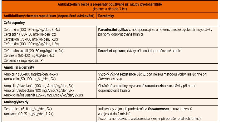 Antibakteriální léčba akutní pyelonefritidy.