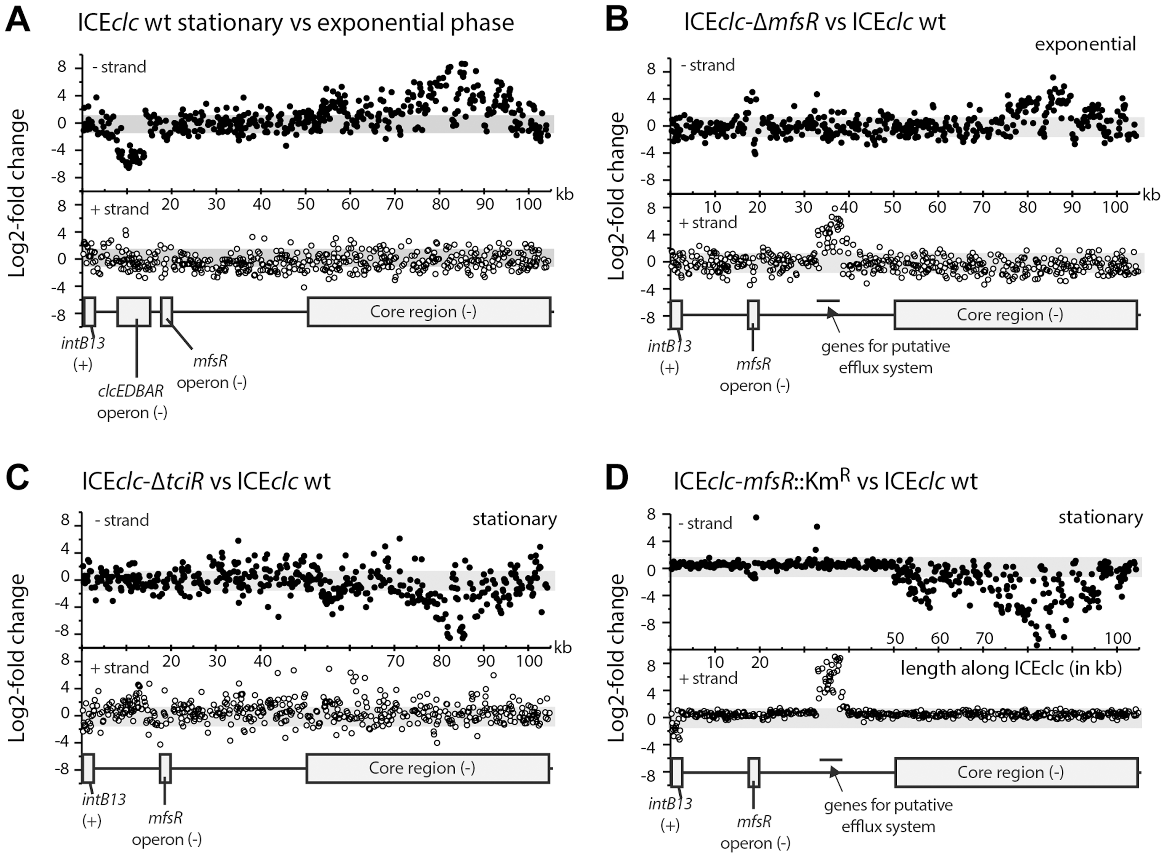 Differential expression of the ICE<i>clc</i> gene region from micro-array data in selected mutant ICE<i>clc</i> versus wild type in <i>P. putida</i> UWC1.
