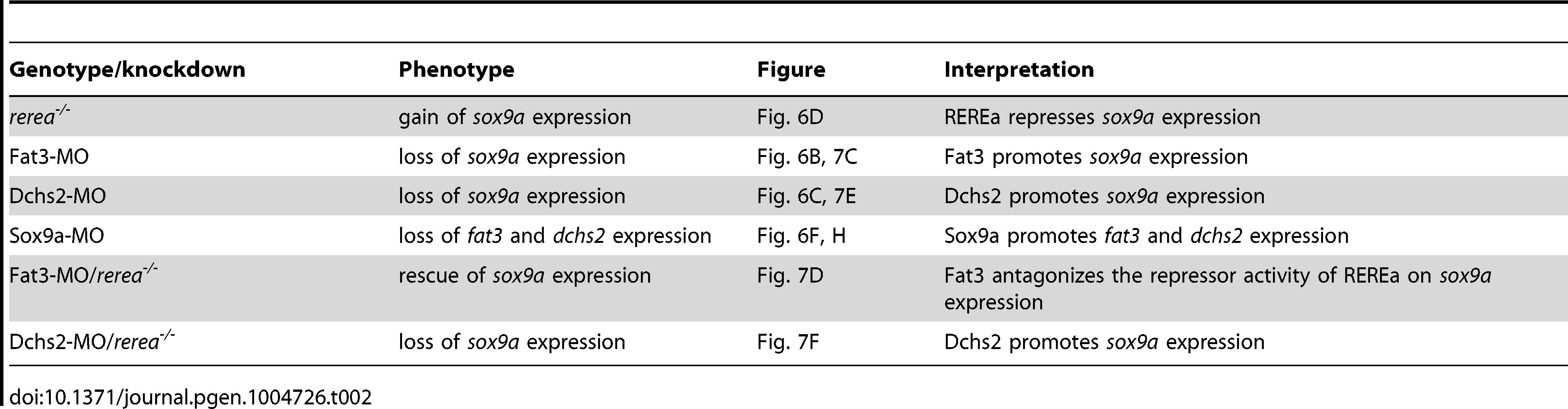 Summary of loss of function interactions.