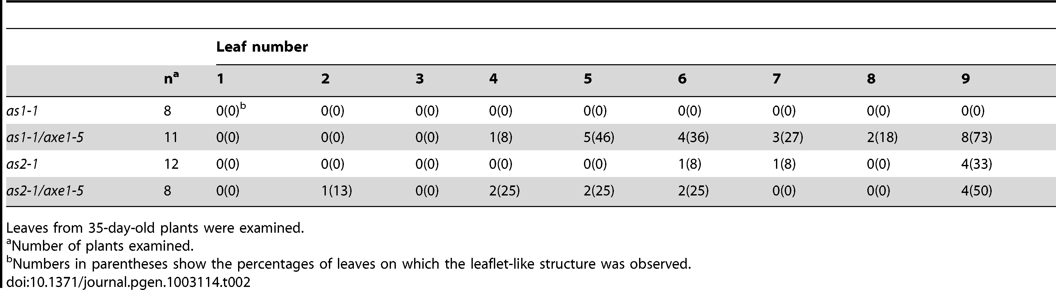 Frequency of leaflet-like structure.