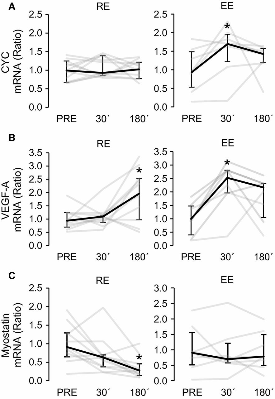 Figure 4. Gene expression changes of known PGC‐1α target genes cytochrome C [(A), CYC], VEGF‐A (B), and myostatin (C) at 30 min (30′) and 180 min (180′) after resistance (RE, n = 11) and endurance (EE, n = 8) exercises. The gene expression changes are presented in relation to PRE average. Black lines represent median responses to exercise and gray lines individual responses. Error bars represent interquartile range. *Wilcoxon matched pairs signed‐rank test with Holm–Bonferroni correction P < 0.05 versus PRE, **P < 0.01 versus PRE.
