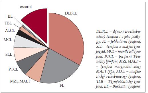 Graf 1. Proporcionální zastoupení jednotlivých subtypů nonhodgkinských lymfomů podle The non-Hodgkin's lymphoma classification project.