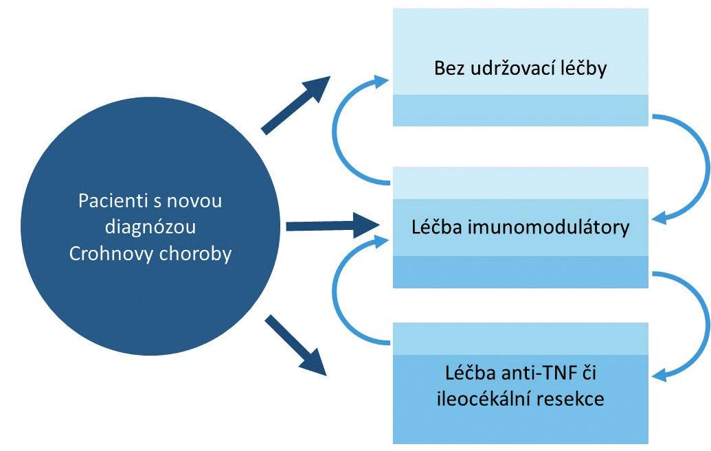 Možnosti udržovací léčby u dětských pacientů s Crohnovou chorobou.