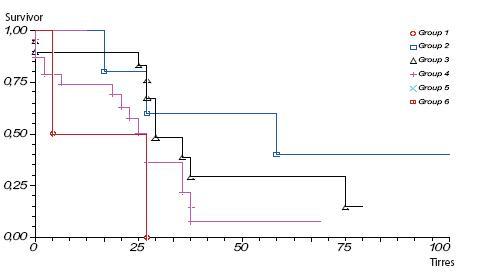 Prežívanie pacientov s karcinómom pankreasu po radikálnej resekcii skupina B operovaní 1. 1. 2005–31. 12. 2009, podľa jednotlivých štádií ochorenia Graph 4. Survival rate of pancreatic cancer patients after pancreatic resection group B operation 1. 1. 2005–31. 12. 2009, according to stage of the disease