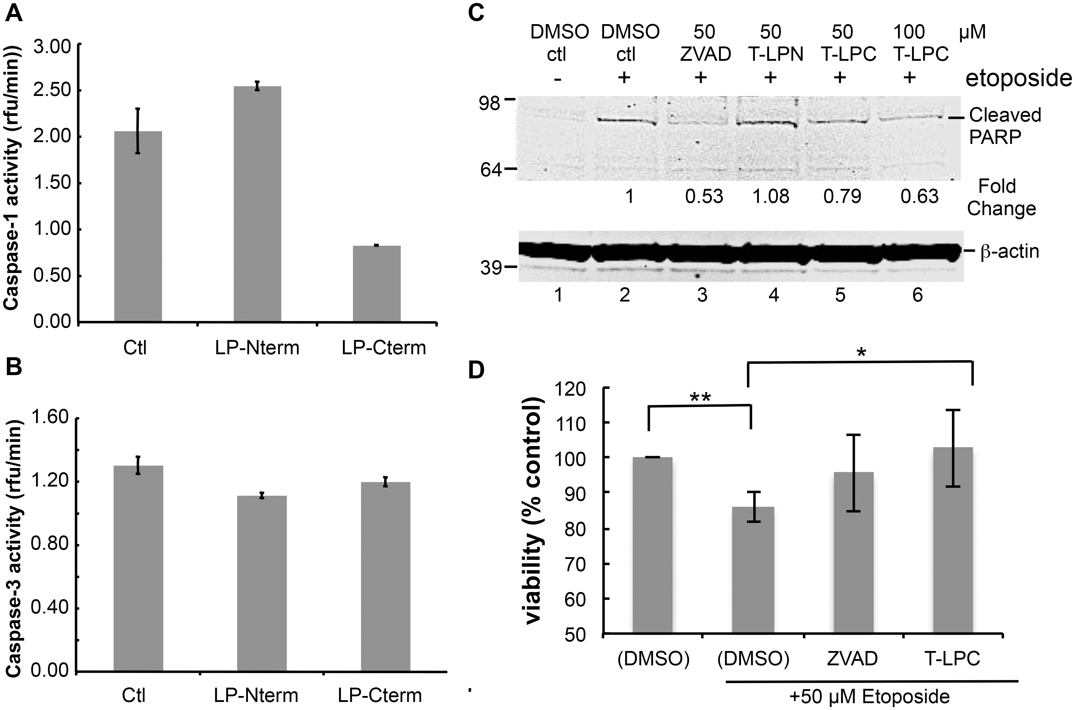 Peptides containing LANA caspase cleavage sites inhibit caspase activity, decrease PARP cleavage and increase cell viability.
