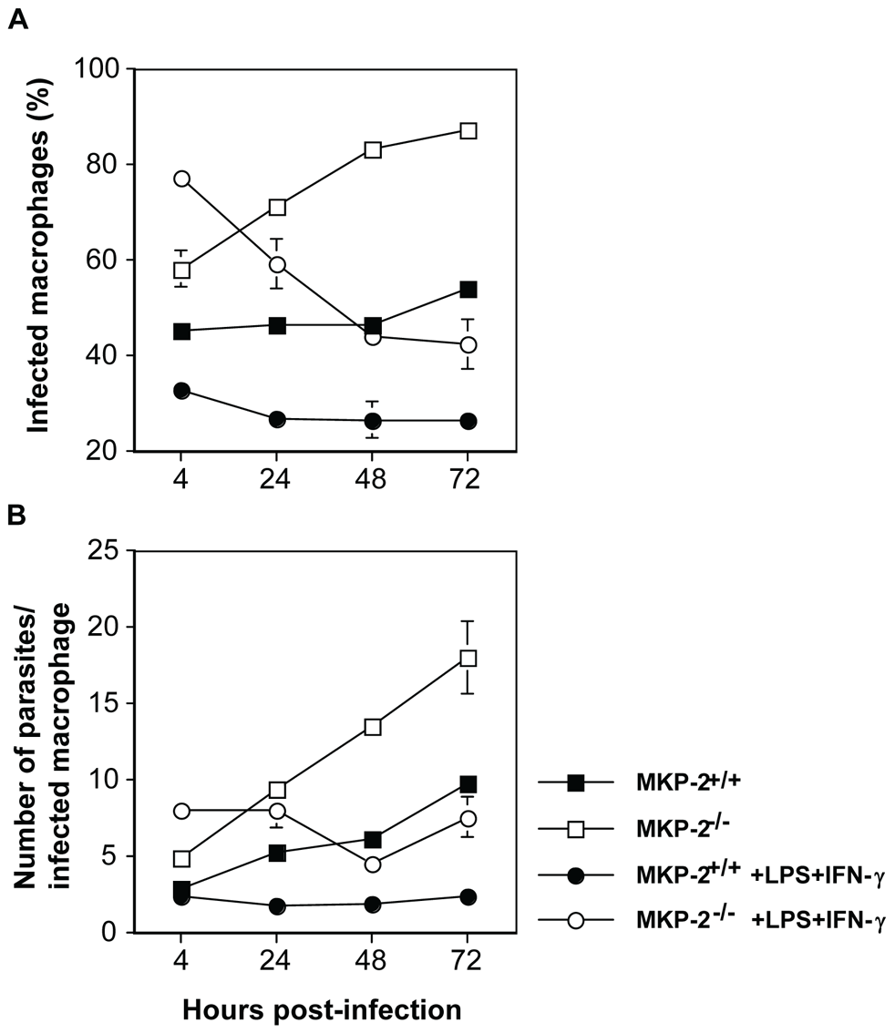 MKP-2 deficiency results in impaired ability of macrophages to control <i>L. mexicana</i> infection.
