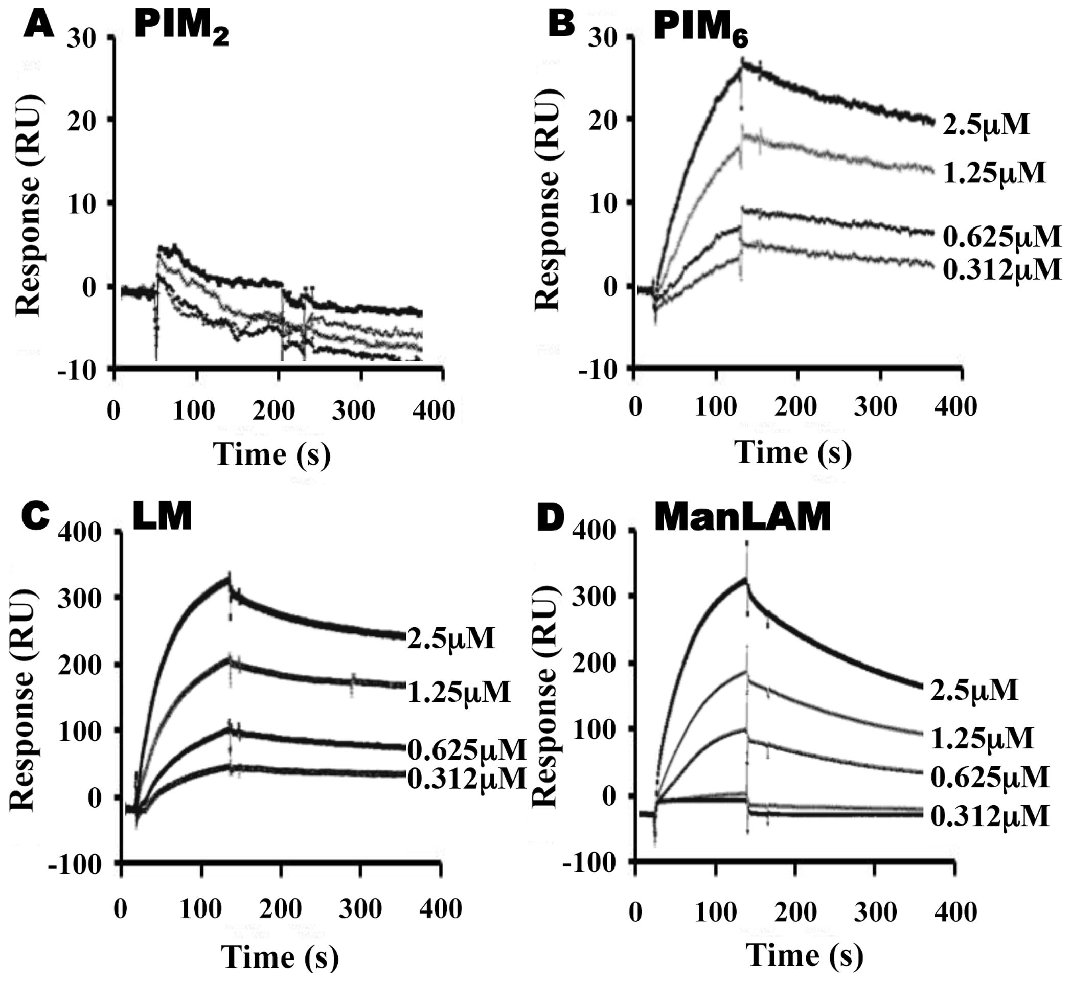LprG V91W hydrophobic pocket mutation reduces binding of Mtb glycolipids and lipoglycans.