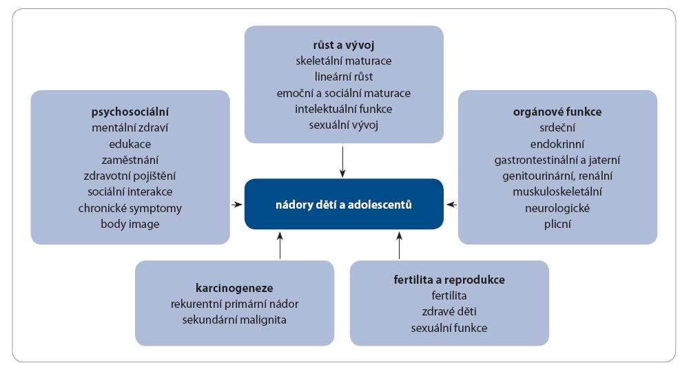 Schéma 1. Rizika pozdních následků u bývalých dětských onkologických pacientů.