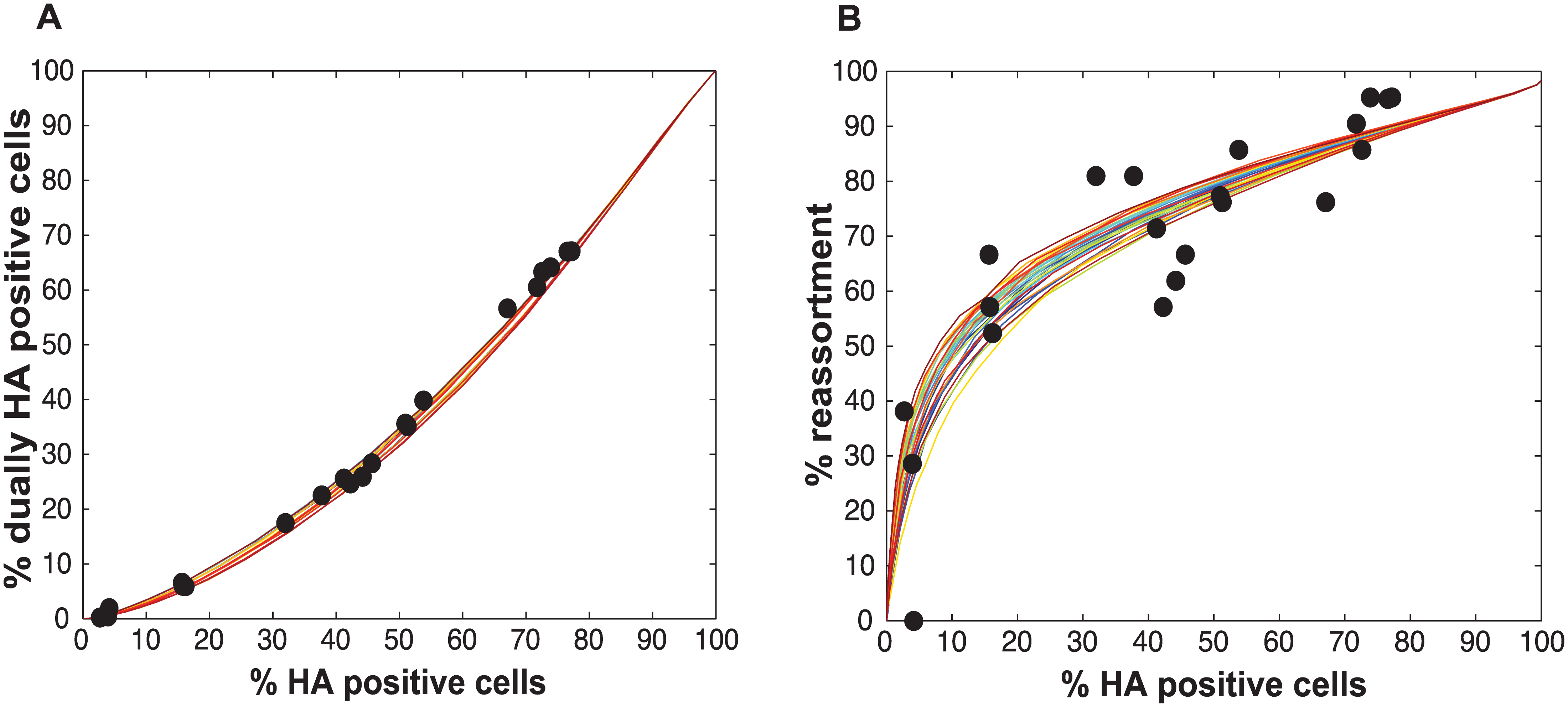 Varying P<sub>P</sub> by segment yields good fit between modeled and observed relationships among HA positive cells, dually HA positive cells and reassortment.