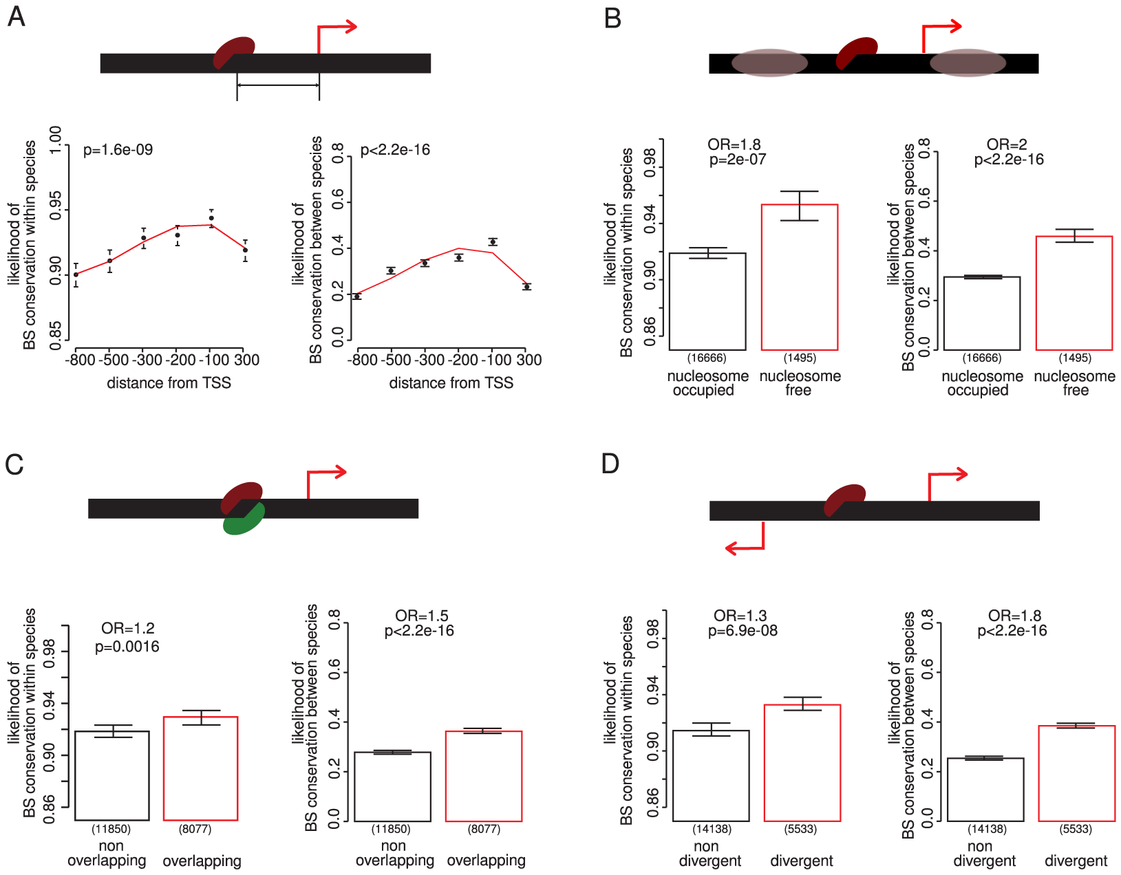 Contextual features of a promoter that predict the conservation of TF binding sites.