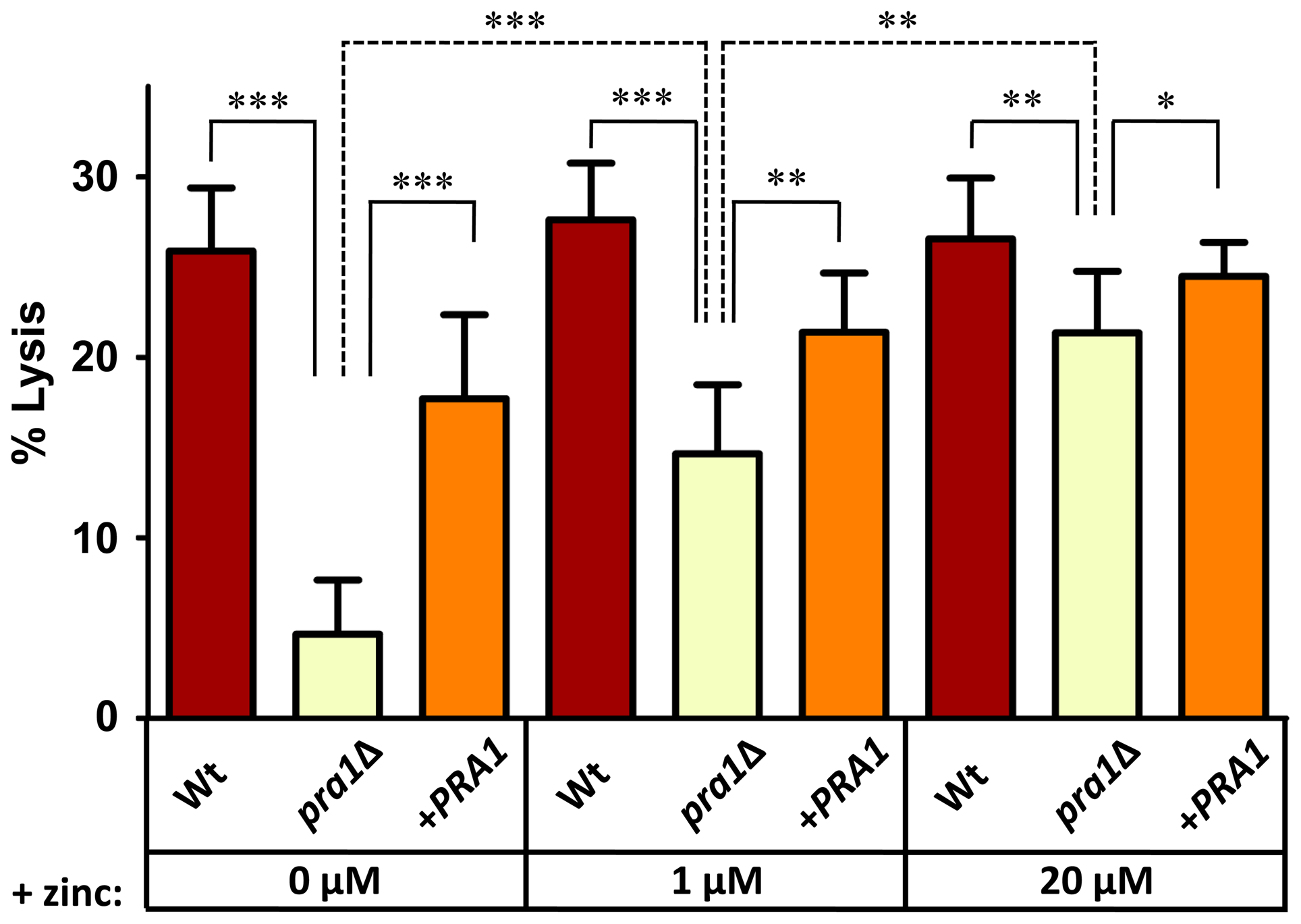 Endothelial damage is zinc-dependent in the absence of <i>PRA1</i>.