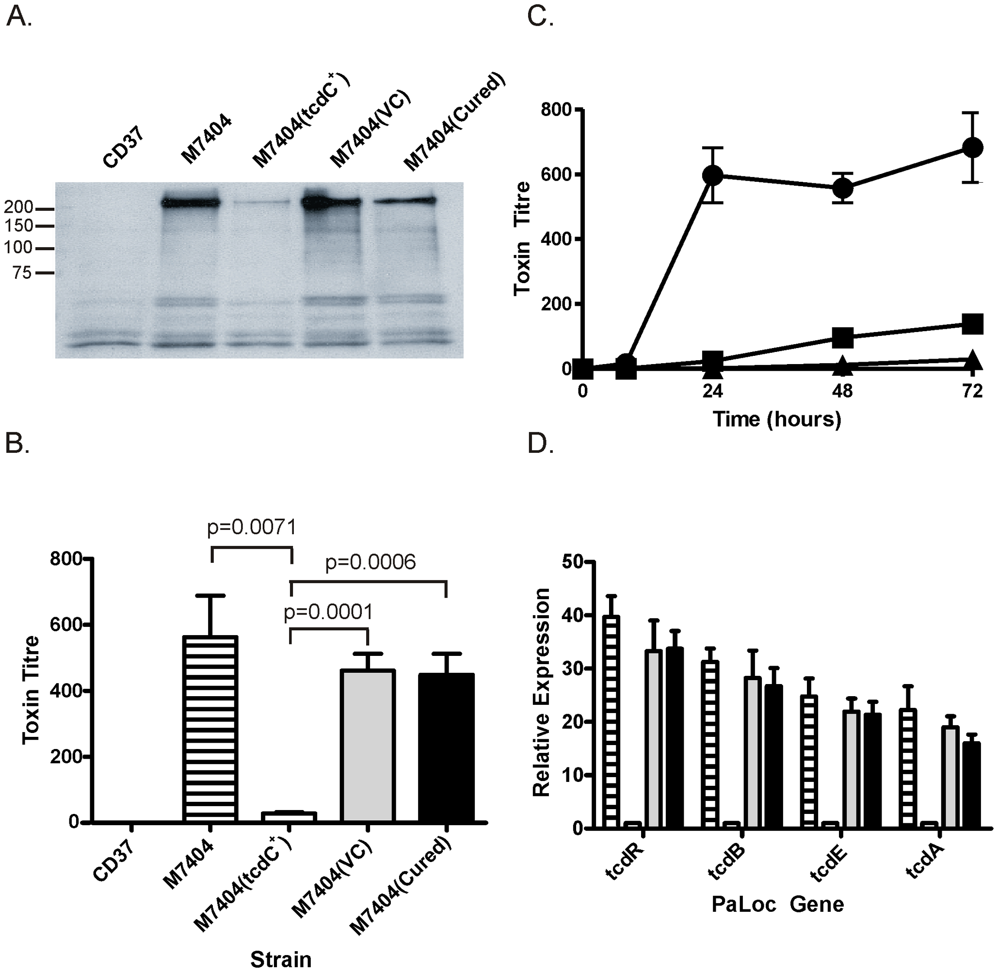 Analysis of the effect of TcdC complementation on toxin production and PaLoc gene expression by <i>C. difficile</i>.