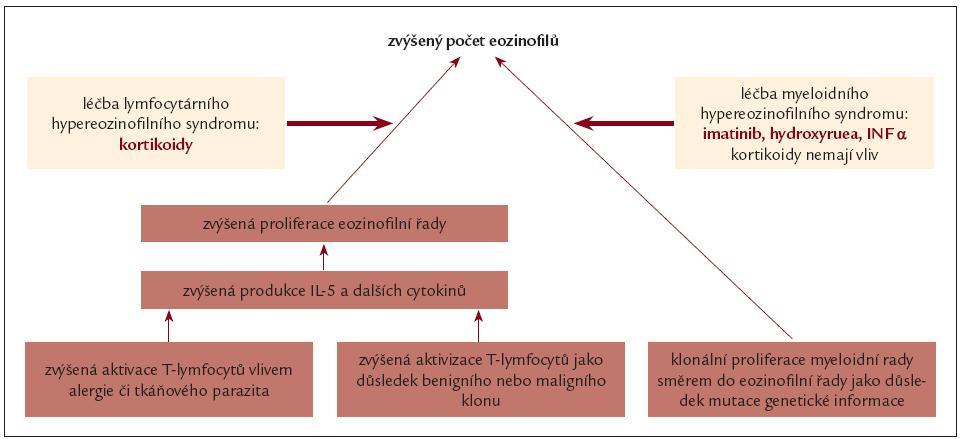 Schéma 2. Příčiny eozonifilie a možnosti jejího ovlivnění.